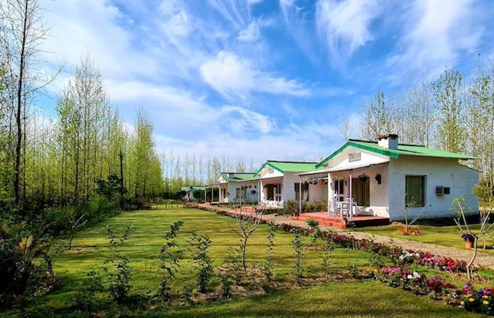 Top-Farms-stay-Punjab